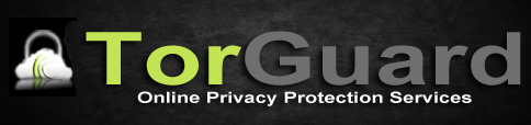 torguard-vpn-for-torrenting